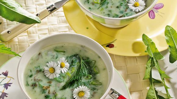 Wild herb soup with daisy recipe