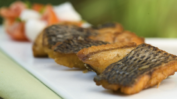 Quick Easy Grilled Tilapia Recipes